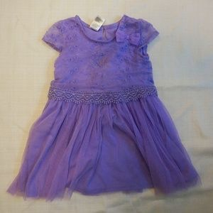 Purple Short Sleeve Dress with lace overlay